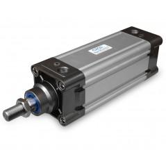 Cilindru pneumatic DNC 100 - Tija M20